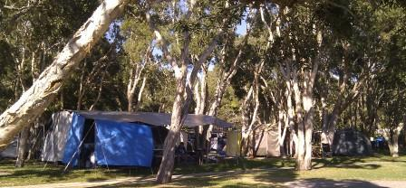 Shady camp sites